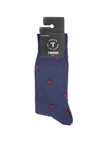 Tween Çorap Lacivert